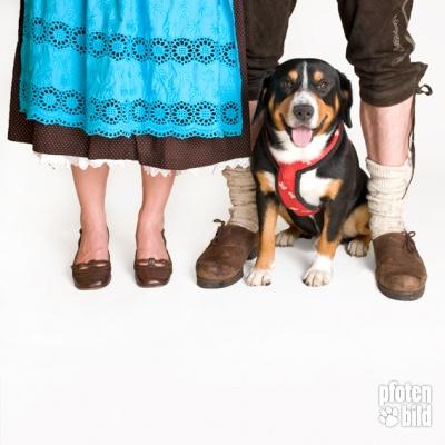 Hundefoto Oktoberfest